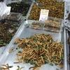タイの屋台で昆虫を喰ってみた結果。