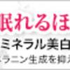 悲しい過去を乗り越えて、富岡八幡宮は変わらぬパワーを降り注ぐ!