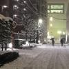 今日のトレーニングは雪かき