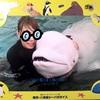 【ファンシー注意】八景島シーパラダイスのイルカとおよごうプログラム体験