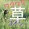 草コイン買うなら!! おすすめ投資法【仮想通貨】儲かるの?