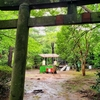 伊豆山神社で龍!
