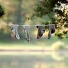 買ってよかったあったか靴下と便利な手洗い洗剤、「フォーエバーニュー」