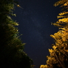🌌野島崎灯台 天の川