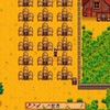 Switch版StardewValleyを買いました