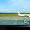 【イタリア旅行】ジョジョ第5部巡礼の旅。渡航編。エールフランスのグルテンフリー機内食。
