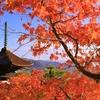 「美しい日本の私」と「うるさい日本の私」