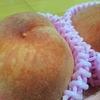季節の旬の果物をその場で食す♪