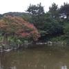 夏の終わりの京都散歩 H290826