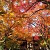【京都】【御朱印】嵐山『常寂光寺』に行ってきました。 京都観光 京都旅行 女子旅 主婦ブログ