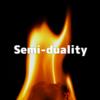 「準双対関係」、蛾と燃え盛る炎
