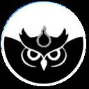 S-Owl