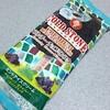 コールド・ストーン・クリーマリー「クランチーチョコミンスター」はチョコ味強めなチョコミント♪