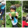 第2回ー夏休み校外学習ー@宝塚市西谷地区の畑 お昼ゴハンは、流しそうめん