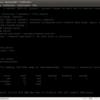 ファミコンミニでSDカードからLinuxが完全に起動した