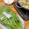 生で食べても美味しいホウレンソウ、山形庄内野菜「御立葉ほうれん草」をしゃぶしゃぶでいただく。パパ飯5