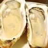 居酒屋:東京駅近でコスパ良く牡蠣や海鮮を堪能できる居酒屋!牡蠣は1個299円から!?|牡蠣 海鮮居酒屋 蔵よし 八重洲口店