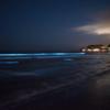 石垣島で星や夜光虫を見るならココ!おすすめ星空ツアーもご紹介します
