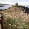 済州島(チェジュ島)秋旅 #チェジュの秋を楽しむ旅(北部編)