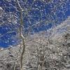 氷遊び@八ヶ岳