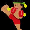 K-1 WORLD GP 2019 JAPAN~K-1 スーパー・バンタム級世界最強決定トーナメント~(in両国国技館)感想。【2019.6.30】❶(前編)2019.7.3