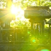 神社の裏っかわにひっそりと 豊後高田市森 貴船神社の庚申塔