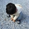 2017年初詣における2歳男子の行動