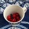 しまじまの旅 たびたびの旅 95 ……お隣さんちでお茶とベリー摘み