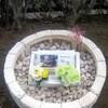 ★にゃんちゃんの墓石を製作致しました。