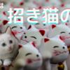 9月29日は招き猫の日!
