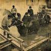 函館競馬場120年の軌跡