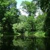 【バス釣り】4日間50kmを歩き倒して分かった『釣れる野池』 パターン5選