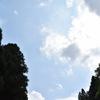 8/7 第2回 瞑想フェス開催☆ 瞑想って何?〜深い瞑想体験を、2時間で!