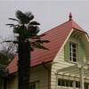 【名古屋】となりのトトロのサツキとメイの家は見事な再現率でした【愛・地球博/愛知県】