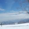 イヌイット語で雪を表す言葉は何種類?問題を確かめた話