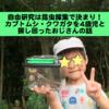 自由研究は昆虫採集がオススメ !カブトムシ・クワガタを息子と捕まえるための重要事項まとめ!