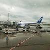ANAビジネスクラス特典航空券でイタリアに行ってきた!③成田→デュッセルドルフANAビジネスクラス搭乗記(家族3人どう座る?)