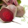 亜硝酸塩の運動パフォーマンスへの影響(葉物野菜とBRに多く含まれる硝酸塩は、筋の収縮性の増大、血圧低下をもたらす低酸素性血管拡張、さらに運動中の酸素需要の減少など一連の生物学的反応をもたらす)