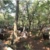 171009 東京遠征2ヶ所目フィールド「シールズSEALs」