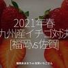 1249食目「2021年春 九州産イチゴ対決 [福岡vs佐賀] 」福岡あまおう vs 佐賀いちごさん