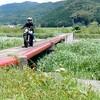 和歌山県上富田の潜水橋(畑山橋・山王橋)へバイク旅
