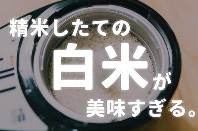 間違えて玄米買ったから、家庭用精米機買ったら、めちゃめちゃおいしかった!