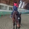 しあわせの村で乗馬体験!楽しいだけじゃなくて、癒し効果も!!