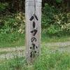 【札幌】ウォーキングにおすすめ!南区石山のハーブの小径