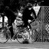 相模原の自転車事故、神奈川県内で最多!