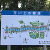 玉川上水緑道と神田川ランニング~どんどん橋、浅間橋、富士見ヶ丘駅、久我山駅のあたりをぐるっと~