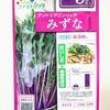 赤紫色の水菜『紅法師』を水耕栽培。この色はアントシアニンを多く含むからだそうです