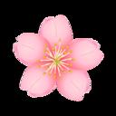 心懸かる木に今日、花を幻視せり