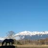雪景色の御嶽山(御岳山)・2021年4月07日②