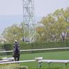 <中山ダ1800 傾向>ノーザンファーム生産のキングカメハメハ産駒!